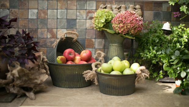 Грижи за градината през октомври