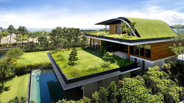 Да озеленим...покрива