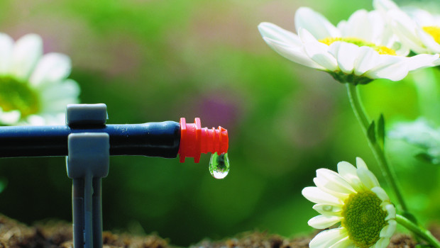 Капково напояване - какво трябва да знаем