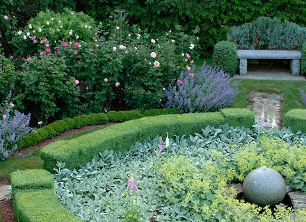 Да озеленим двора с цъфтящи храсти