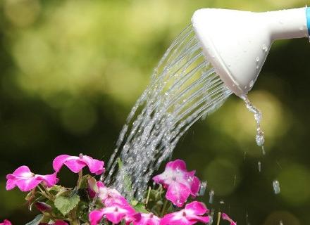 Как да пестим поливна вода