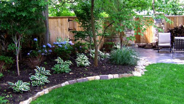 За нетърпеливи градинари - бързорастящи декоративни дървета