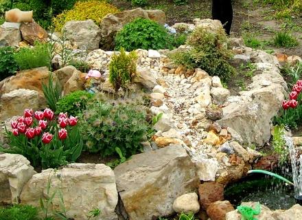Създаване на алпинеум в градината