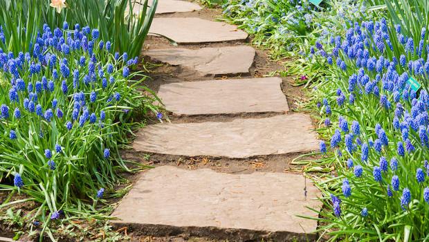 Хладното очарование на каменните алеи