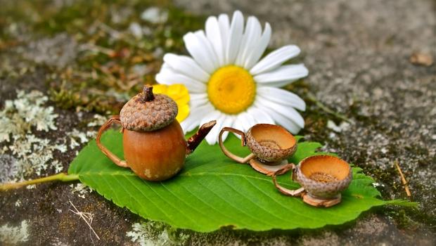 Нестандартни идеи за есенна украса с орехи, шишарки и жълъди
