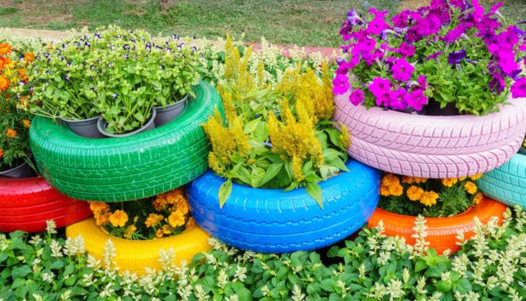 Как старите гуми се превръщат в чудесни цветарници