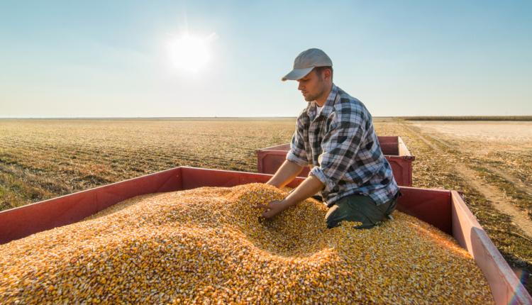 Конкурсът Млад фермер 2019 приема заявки за участие