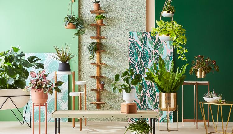 Цветята в интериорния дизайн