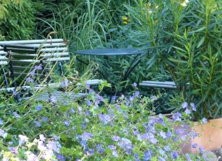 Едноцветна градина - изискана и стилна