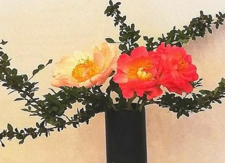 Икебана - да вдъхнем нов живот на цветята