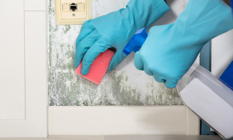 Как да отстраним петна от теч по стените или тавана