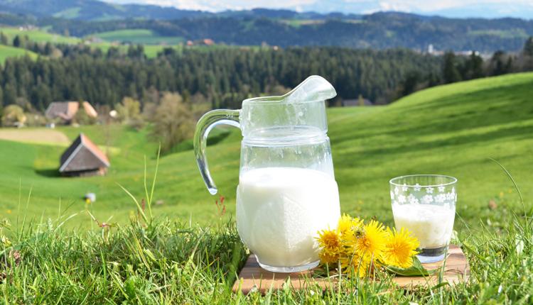 Мляко в градината - за цъфтеж и против вредители