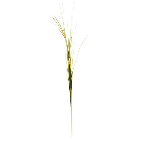 Трева зелена