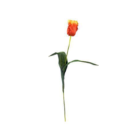Лале оранжево