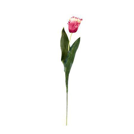 Лале розово