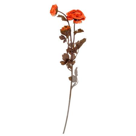 Камелия тъмен оранж