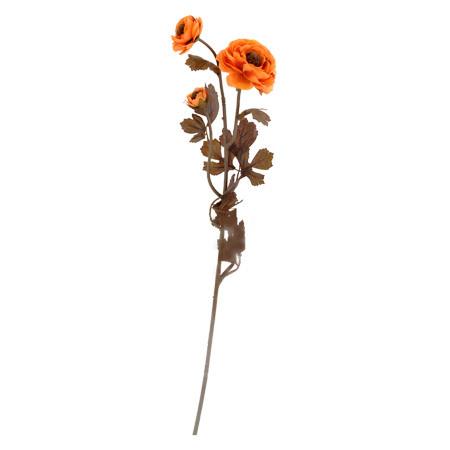 Камелия оранж