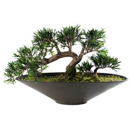 Зелен бонсай