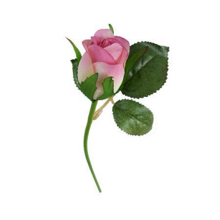 Роза розова
