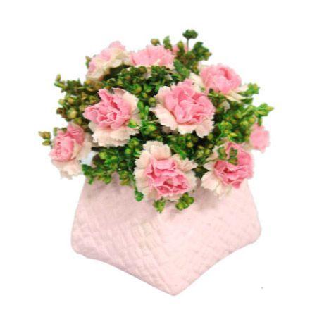 Кошничка розова