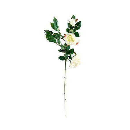 Роза бяла 99см.