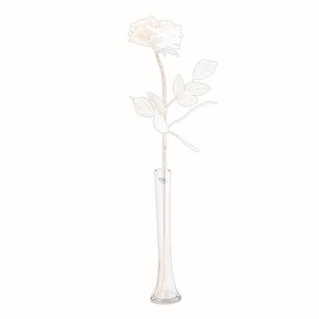 Бяла роза стрък